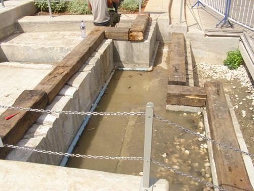 פילטר צמחים למים אפורים פארק הרצלייה