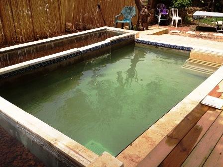 בריכת שחייה ושכשוך ביולוגית אקולוגית.