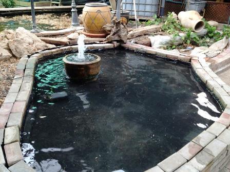 כך הבריכה ניראת לאחר מילוי המים וכן מזרקת מים בעשייה עצמית