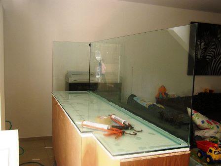 אקווריום לדגי מים מתוקים