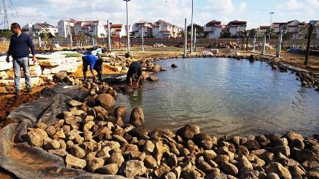 חיפוי גדות הבריכה באבני בזלת שחורות