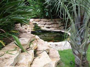 בריכת נוי בבני ברק Backyard Fish Pond