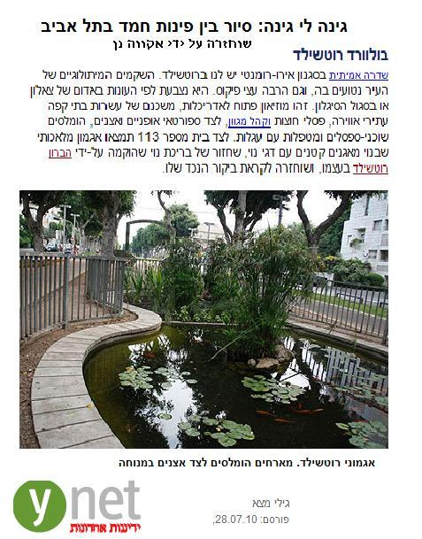 שיחזור בריכת נוי בשדרות רוטשילד תל אביב