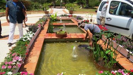גינון מים המועצה לארץ ישראל יפה