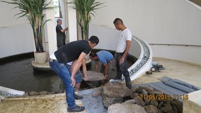 שדרוג ברכת דגי קוי בבית משותף באזור המשתלה בתל אביב