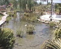 אגם מים קטן בקיבוץ נען