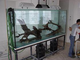 אקווריום 1000 ליטר