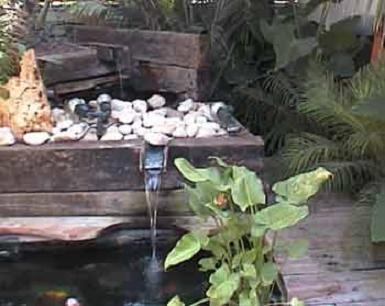 בריכת מים קטנה בחולון