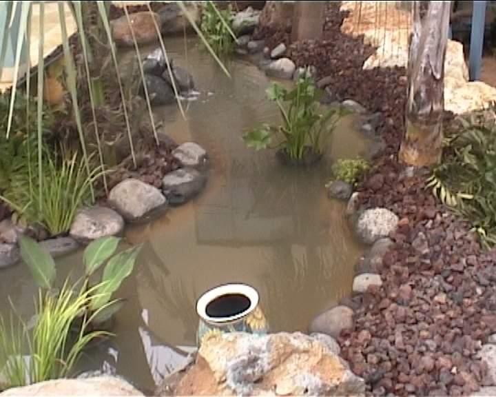 בריכת מים קטנה ביום ההפעלה