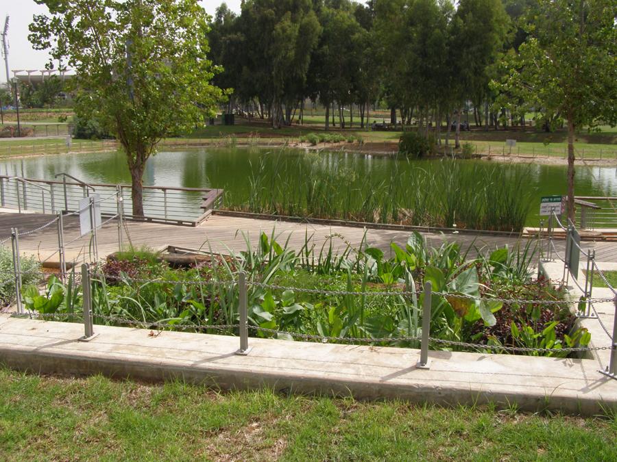 פילטר צמחים למים אפורים הרצלייה