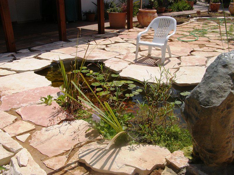 בישוב מכבים Backyard Fish Pond,