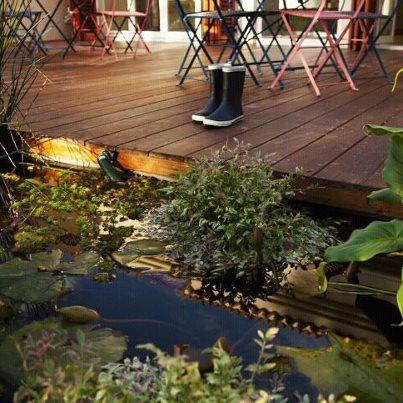 בריכת נוי קטנה קלאסית בקווים ישרים Backyard Fish Pond