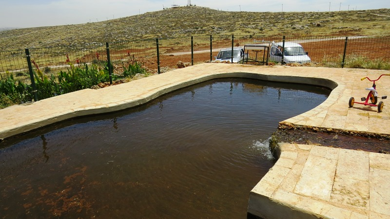 בריכת שחייה אקולוגית בישוב בית חגי