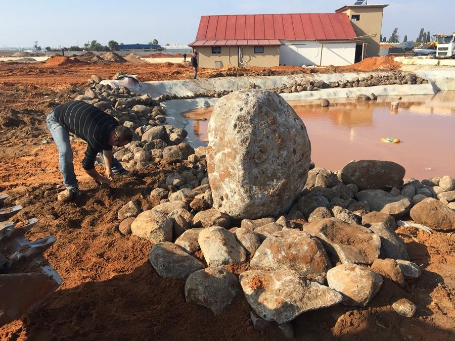 העמדת הסלעים