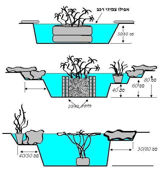 אפשרויות שנות לתיכנון הבריכה