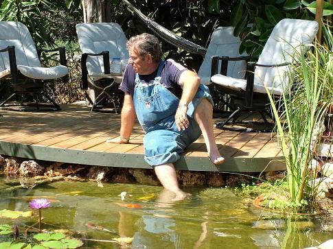בריכת דגי נוי קטנה בישוב מכבים Backyard Fish Pond