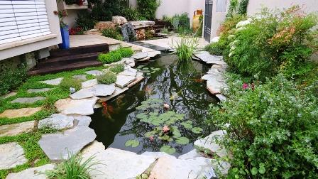 ראה כללי של הבריכה לאחר הכנסת צמחי הגדה והמים לפני מסירתה ללקוח